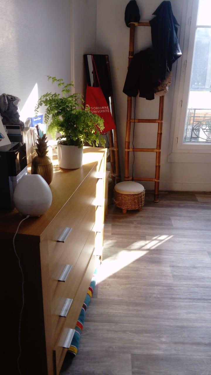 Studio lumineux, petit nid cosy proche Montmarte.