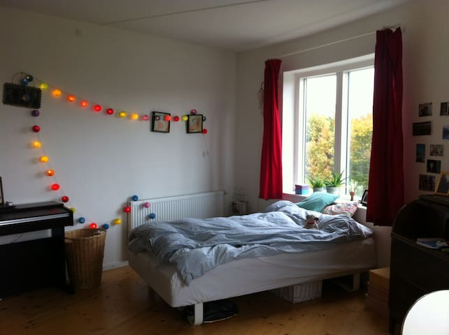 Stay in a small and cute apartment - Århus - Huoneisto