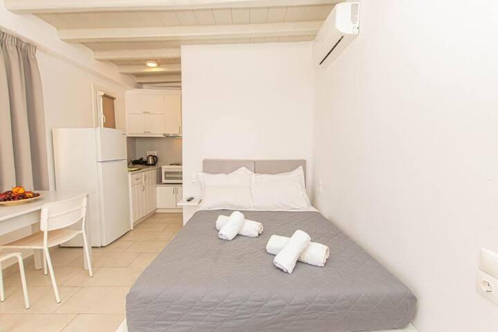 Overview Mykonos Apartments Garden View Studio