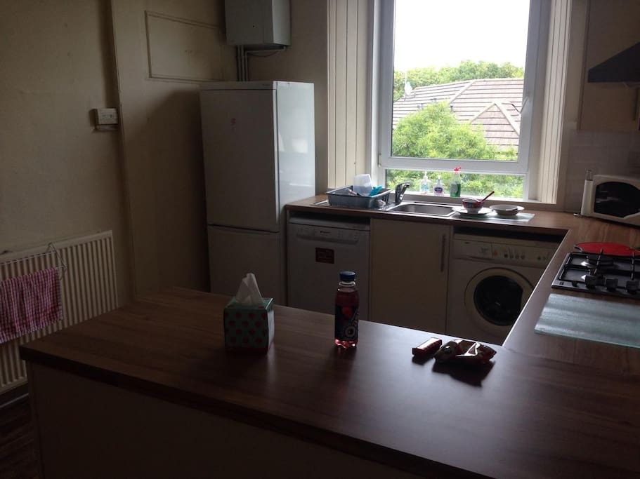 Kitchen including dishwasher, washing machine and microwave