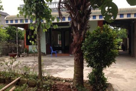 Hanoi's suburban garden house