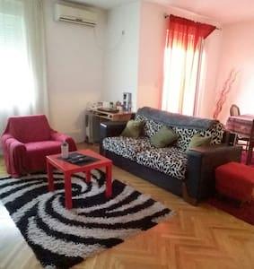 Cozy apartment - Podgorica - Apartment