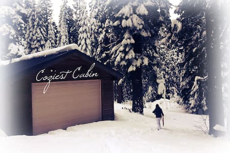 Cozy Cabin in Emigrant Gap