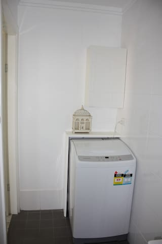 Top loader washing machine (pegs, powder and clothes line too)