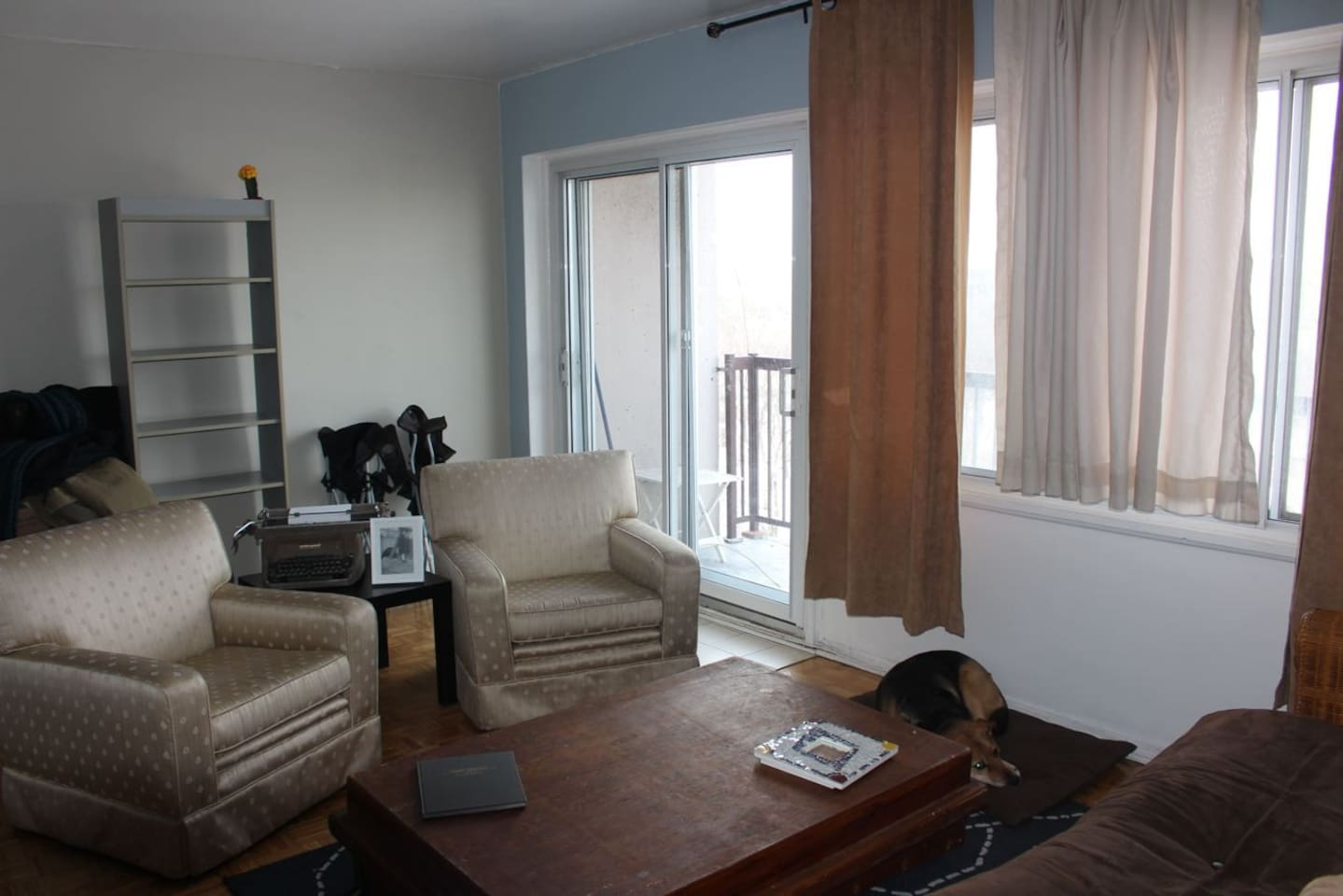Spacious living room. My place gets lots of light.
