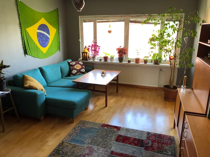 Large summer apartment close to everything!
