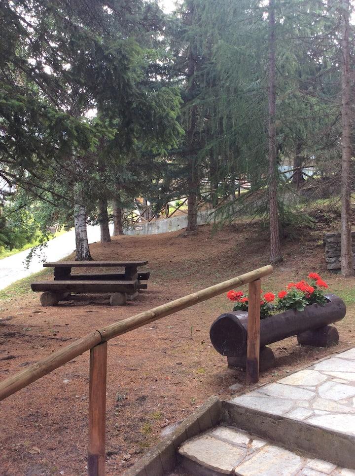 Monolocale con giardino, vicinissimo piste da sci.