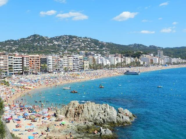 Apartment for 5 persons in Lloret de Mar-50 m MEER - Lloret de Mar