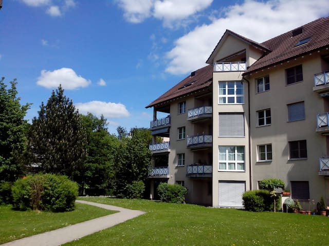 Near Zurich & all 4 urself!Sunny, near forest&lake - Uster - Huoneisto