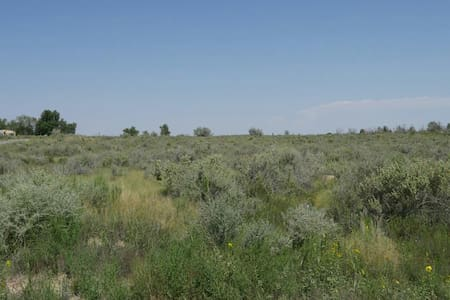 HUNTING CAMP/RECREATIONAL SPACE .26 ACRE
