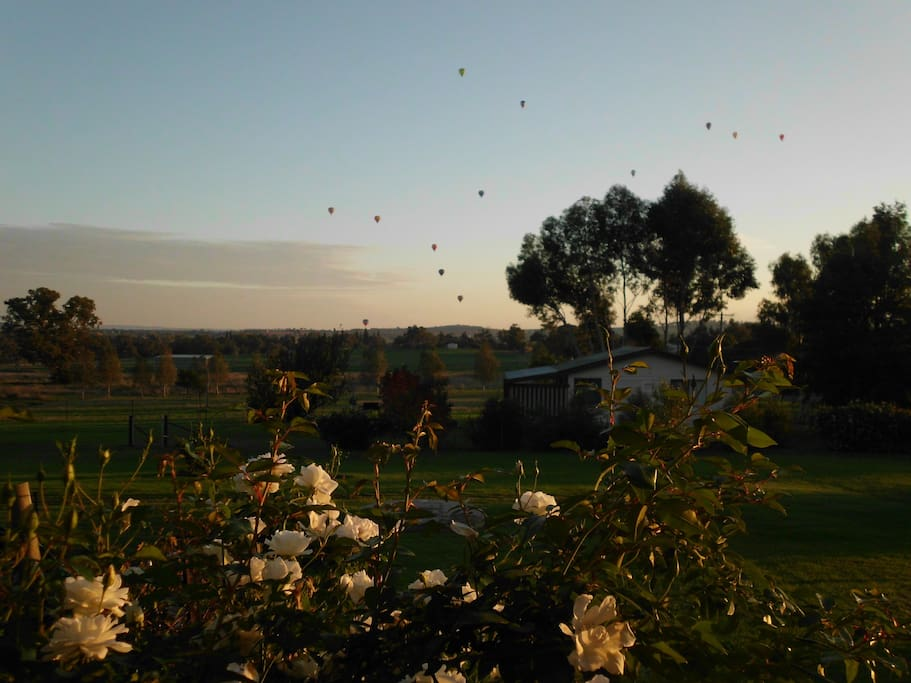 Belubula Cottage and the hot air balloons