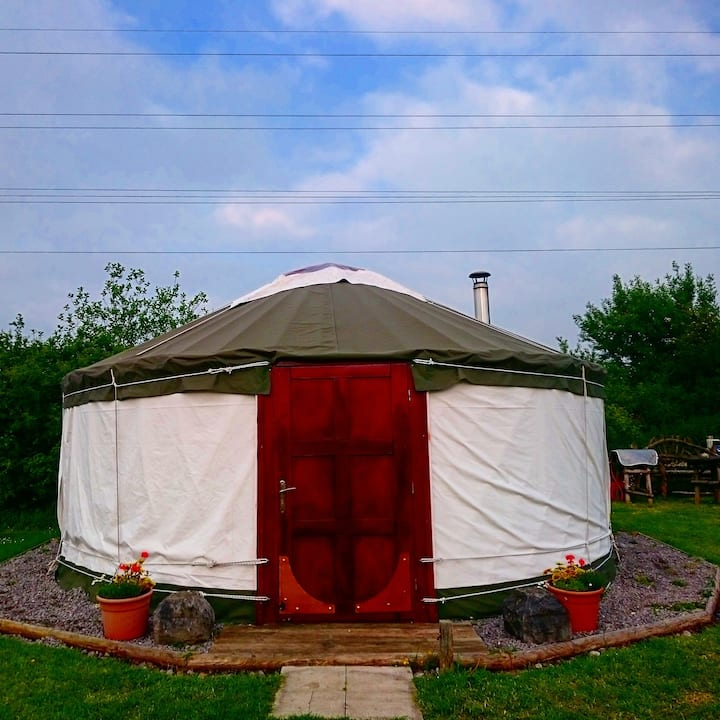 Yurt at Acacia Farm C/S near Cheddar & WSM