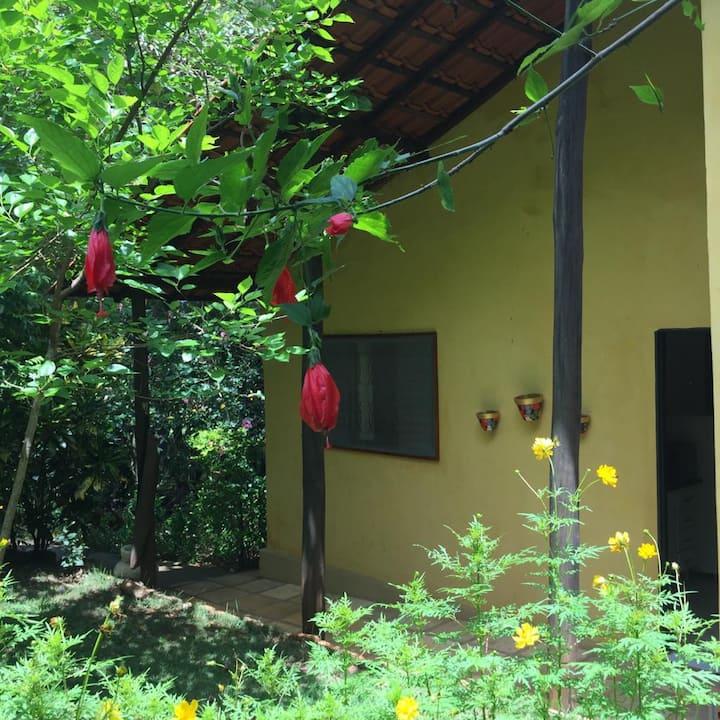 Brotas - Casa de Campo