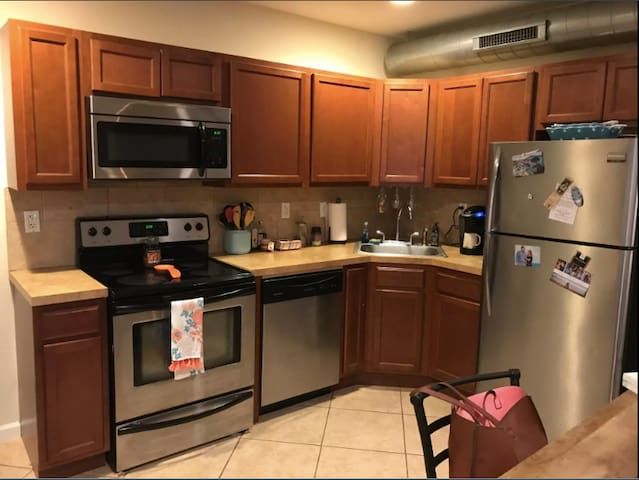 Spacious Apartment in Spring Garden, Center City