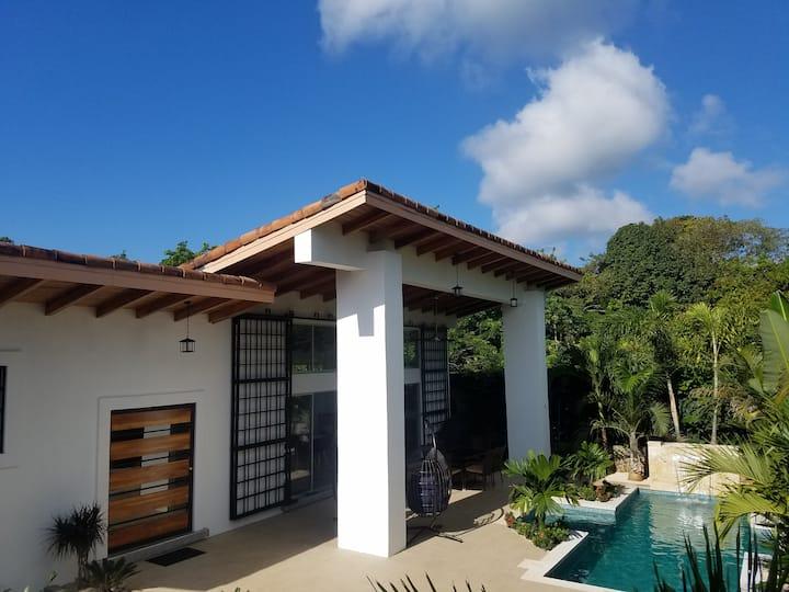 Tropical Modern Minimalist Outdoor Living Paradise