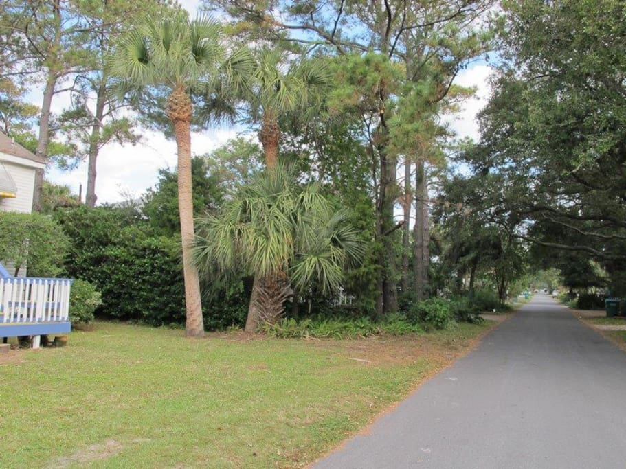 Located on quiet 2nd Avenue and part of the Tybee bike trail
