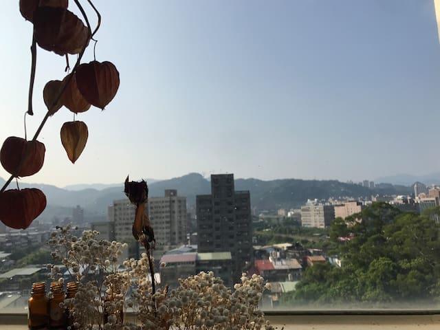 台北市悠哉悠哉有兩貓的電梯景觀10樓(房源日期請與屋主聯繫)