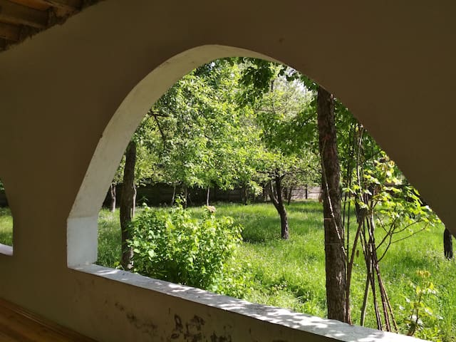 Qebele de bag evi (Garden home in Gabala)