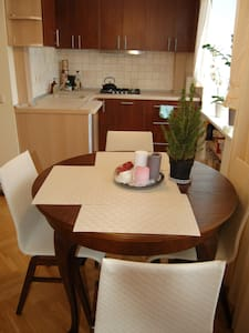 Cozy apartment in Druskininkai! You will love it! - Druskininkai - Διαμέρισμα