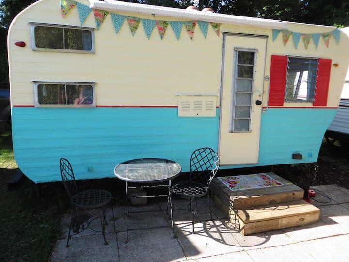 Greenville Blue Lake vintage flamingo camper