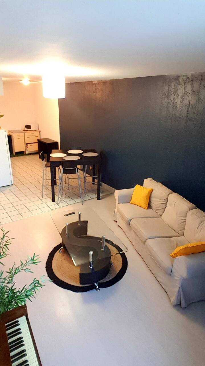 Appartement t2 Montelimar