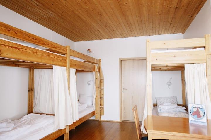 Skorrahestar - Economy family room