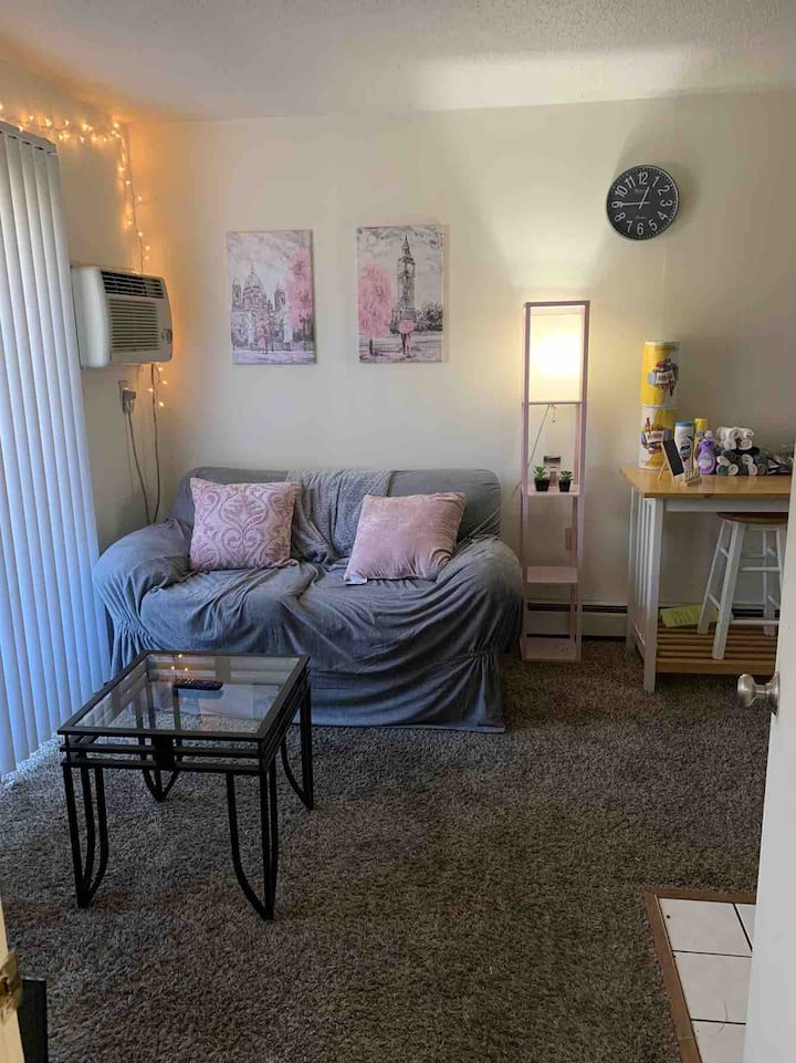 Near First & Green,Cozy 1 Bedroom Campus Apt