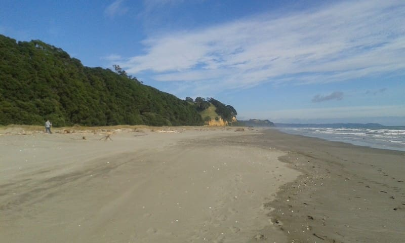 Rustic Retreat by the sea. - Opotiki - Гестхаус