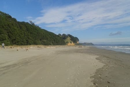 Rustic Retreat by the sea. - Opotiki
