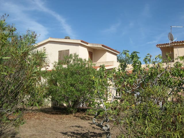 Rena Majore residenze  pineta - Aglientu - Apartment