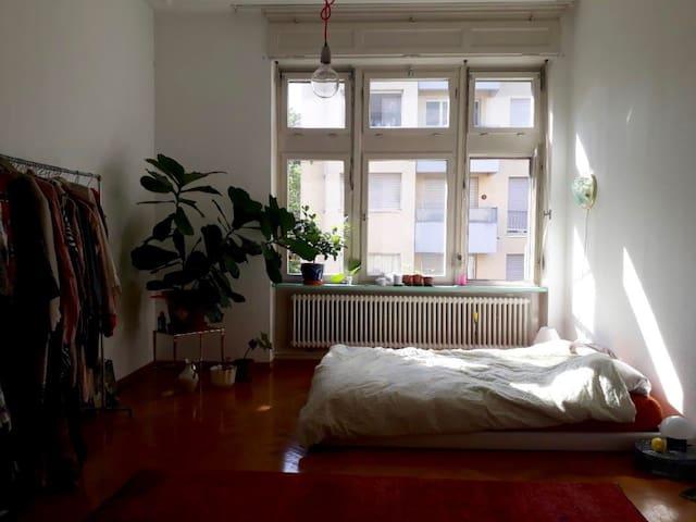 1 room in vintage flat 5min walk to art Basel
