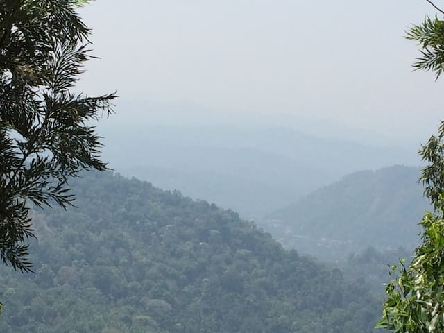 Green Paradise - Pallivasal - Hus