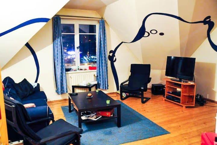 Room in a homey apartment - central - Praga - Apartamento