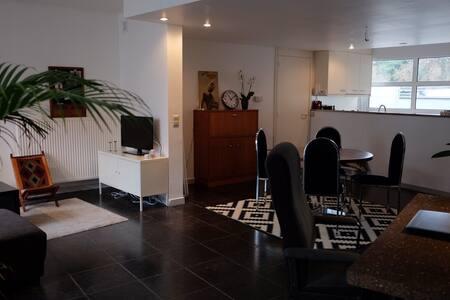 Cosy, spacious apartment (+garden) near the river - Gent - Apartmen