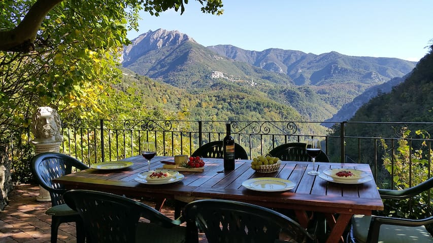 Relax under the fig tree with the mountain views. - Casoli - Huis