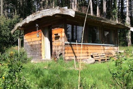Cabane en bois en pleine nature / wooden cabin