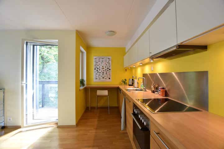 Lovely & spacious central apartment with sauna