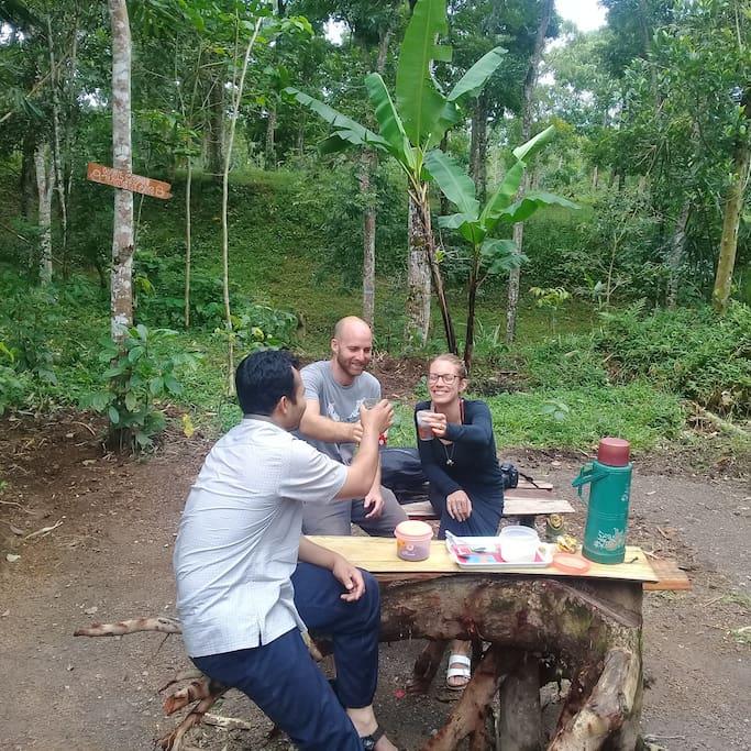 Tereng Wilis Jungle Cafe