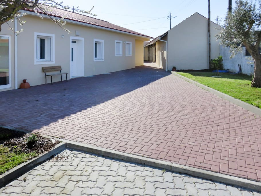 Maison -terrasse - oliviers
