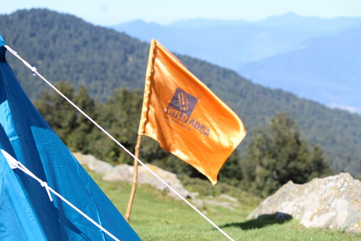 Chopta Spectacular Dome  Tent Stay