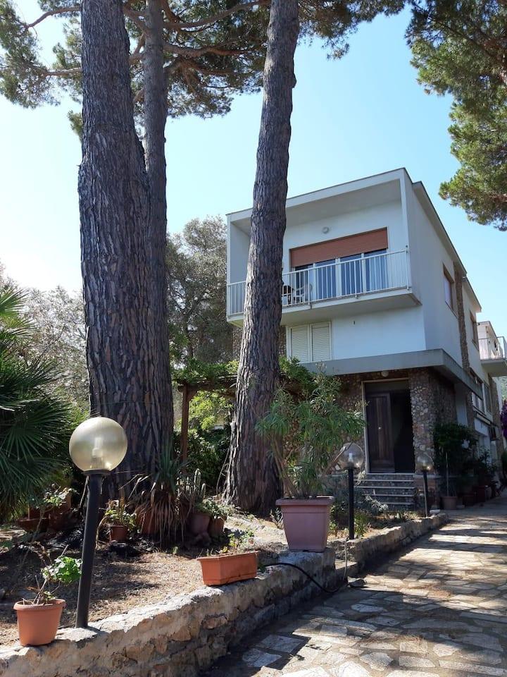 Villa La Quiete, in riva al mare,Monte Argentario