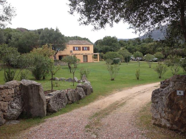 Casa Olivastro immersa nella natura - Olbia - Haus