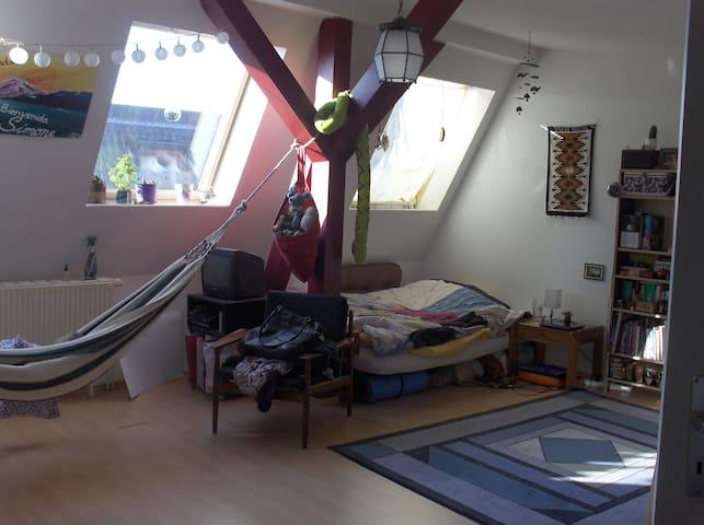 Nice big, shiny room in good area