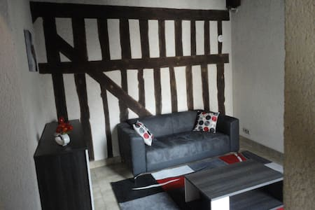 Bel appartement hyper centre Blois - Blois