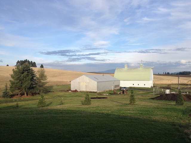 Daily's Farm Air B&B - Potlatch - Haus