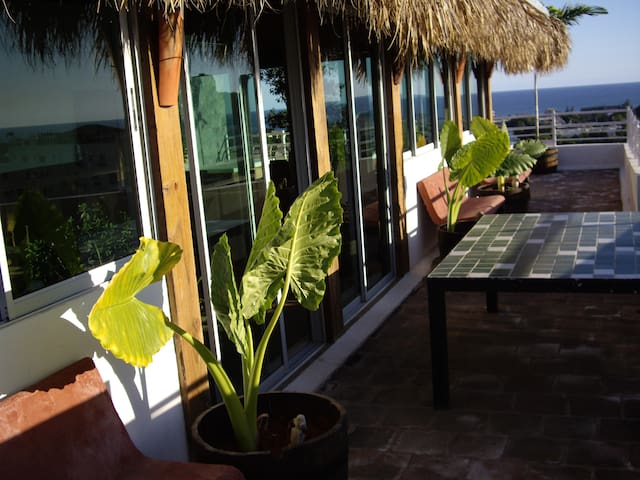 Ocean view beach cottage center city huge terrace - Santo Domingo - Apartament