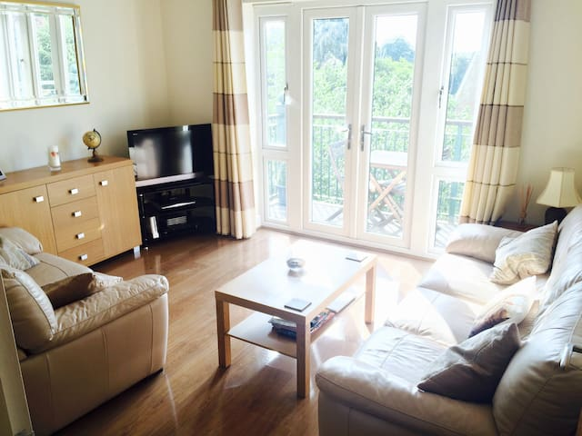 Room in modern, beautiful flat - Maidenhead - Apartment
