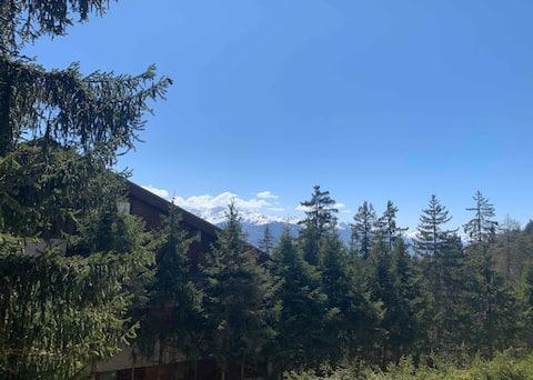Sunny & Spacious Apartment (Mountain View & Ski)
