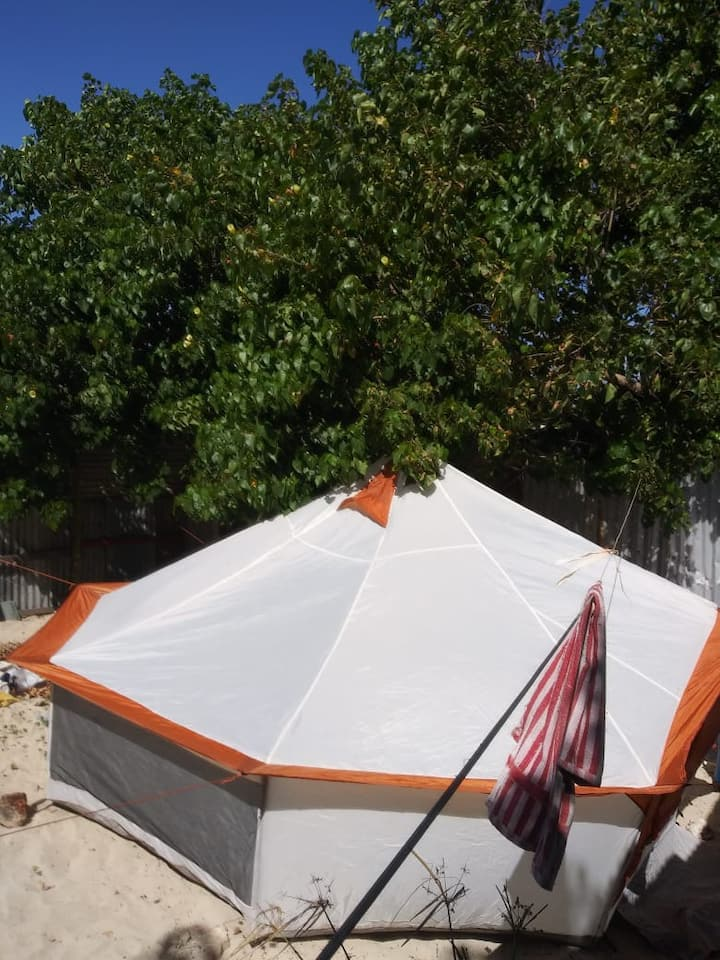 Rent your tent at Hellshire beach