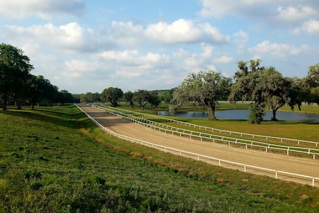 Come and stay on a horse farm near Micanopy - Micanopy - Bungalow